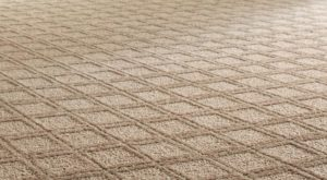 carpet-cleaning-north-county