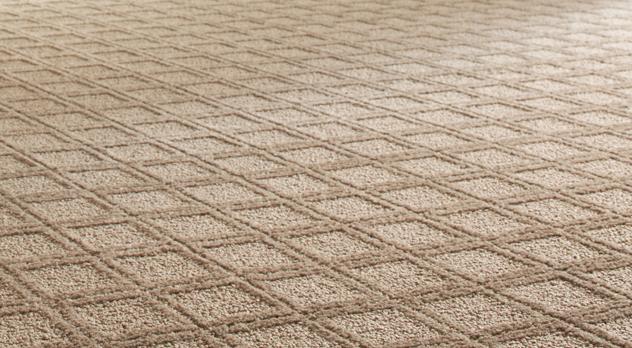 Carpet Cleaning North County Del Mar Rancho Santa Fe